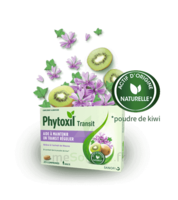 Phytoxil Transit Comprimés B/20 à Arcachon