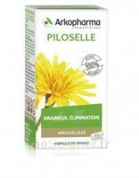 Arkogélules Piloselle Gélules Fl/45 à Arcachon