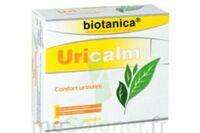 Biotanica Uricalm, Bt 45 à Arcachon
