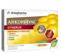 Arkoroyal Dynergie Ginseng Gelée Royale Propolis Solution Buvable 20 Ampoules/10ml à Arcachon