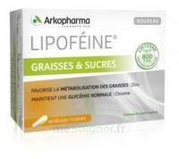Lipofeine Graisse Et Sucres Gélules B/60 à Arcachon