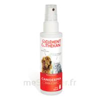 Clément Thékan Caniderma Solution Externe Cicatrisant Spray/125ml à Arcachon