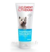 Clément Thékan Shampooing Poils Blancs T/200ml à Arcachon