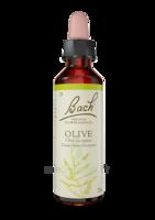 Fleurs De Bach® Original Olive - 20 Ml à Arcachon